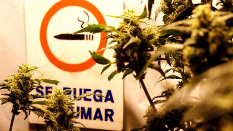 Fumar marihuana es especialmente perjudicial durante la adolescencia