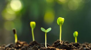 Con una inversión adecuada a tu perfil, ¿aguantarás periodos de baja rentabilidad?