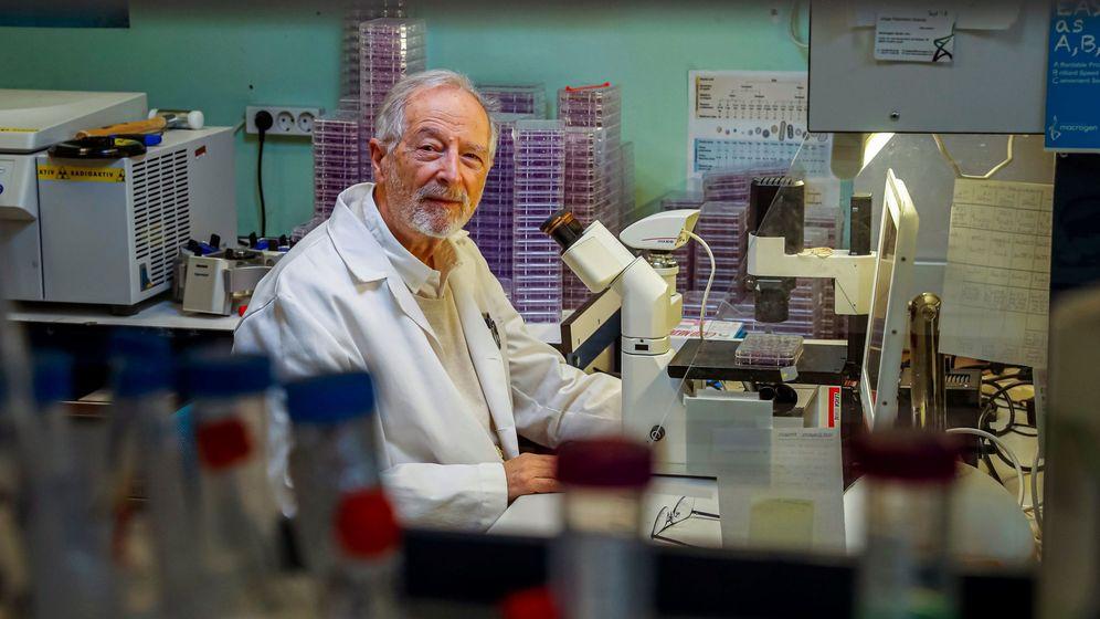 Foto: Luis Enjuanes, en su laboratorio. (EFE)