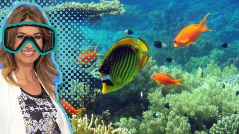 Mariló pasa la Semana Santa entre tiburones en las Bahamas