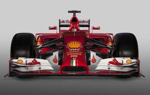 Hormigueros, cangrejos, monos narigudos... nuevos aires en la F1