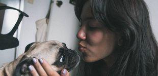 Post de ¿Tu perro te quiere de verdad o es por la comida? El estudio que resuelve la duda