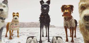 Post de Y el hombre traicionó a su mejor amigo: vuelve Wes Anderson con 'Isla de perros'