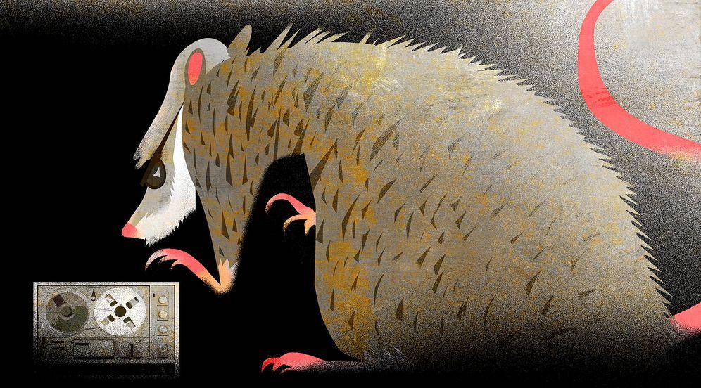 Foto: José Manuel Villarejo. (Ilustración: Raúl Arias)