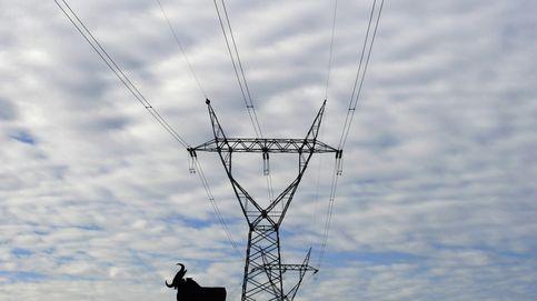 Órdago de las eléctricas a Nadal: recurren en bloque al Supremo por su reforma