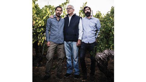 Un milagro vinícola a orillas del río Sil: la bodega que inspira a los grandes chefs