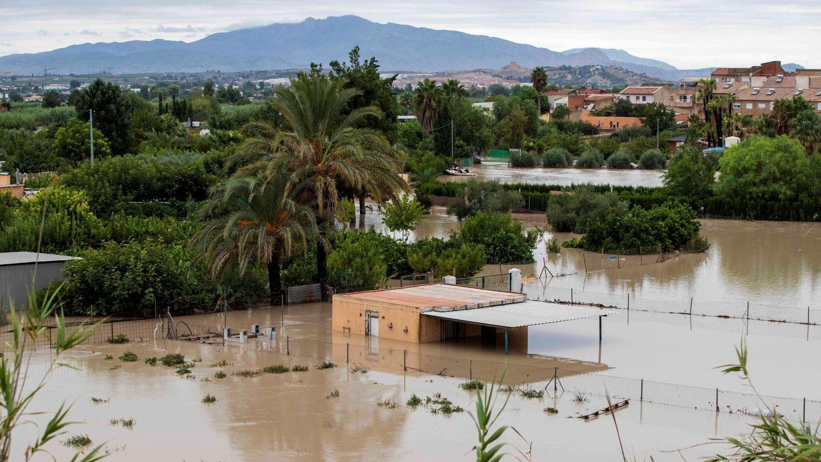 Foto: Vista de la huerta de Torre Alta, Molina de Segura, Murcia. (EFE)