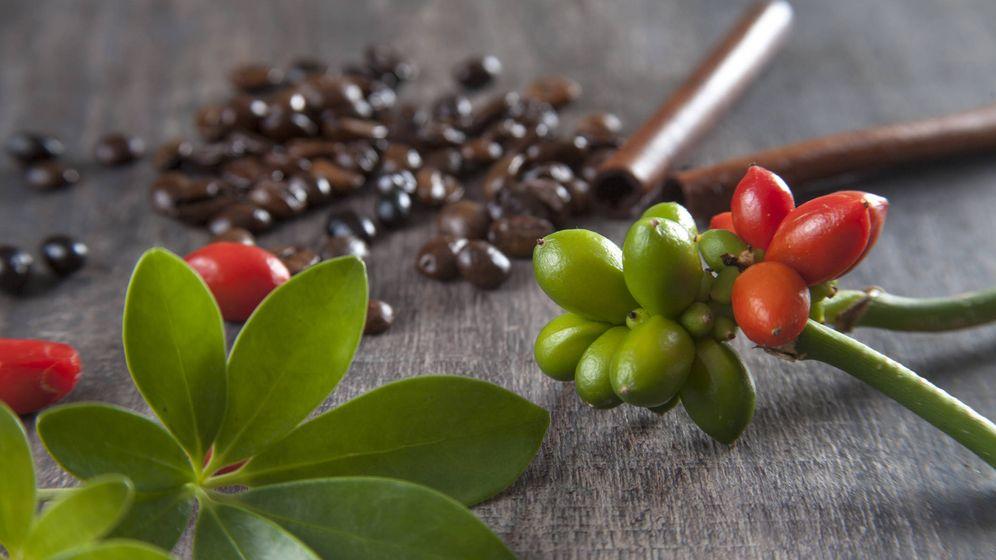 Foto: Semillas rojas y cáscaras de café. (iStock)
