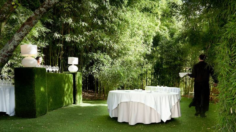 Un bosque en medio de la mágica A Quinta da Auga.