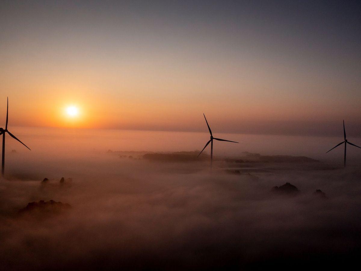 Foto: Parque eólico en Dinamarca. (EFE)