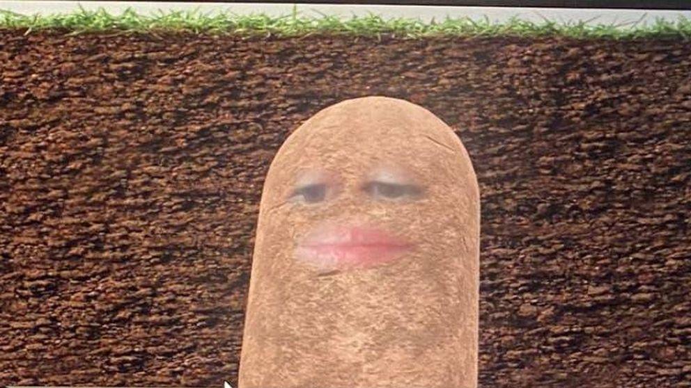 Se vuelve viral tras convertirse en 'Miss Potato' en una reunión de la empresa
