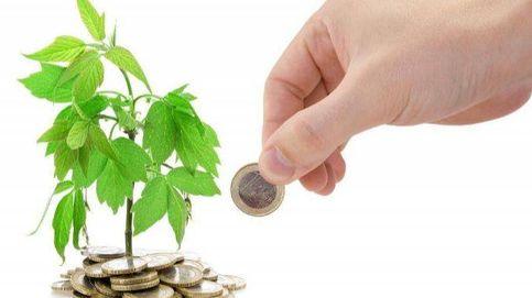 Financiación verde ¿Algo más que una etiqueta?