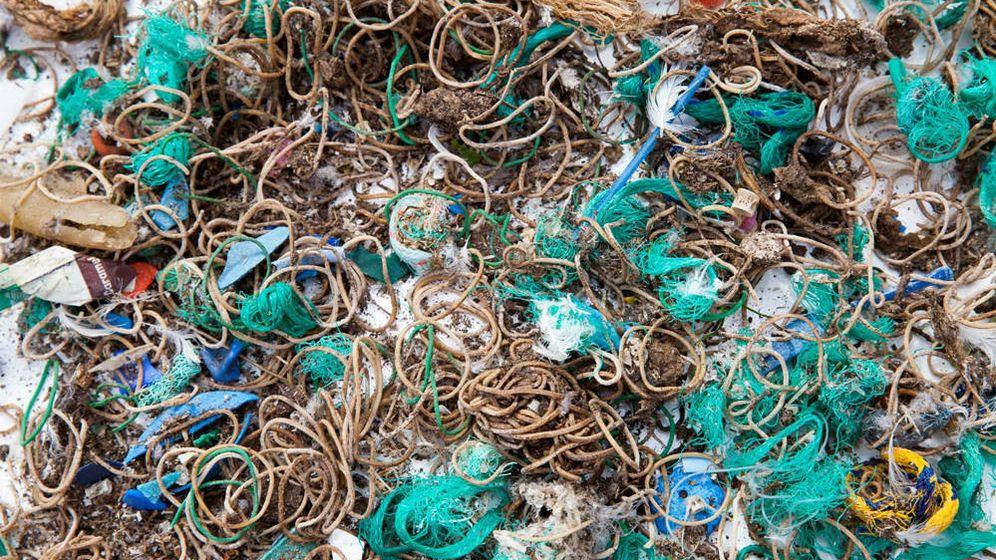 Foto: Las gomas elásticas se cuentan por miles en todos los rincones de la Isla Mullion (Foto: Twitter/National Trust)