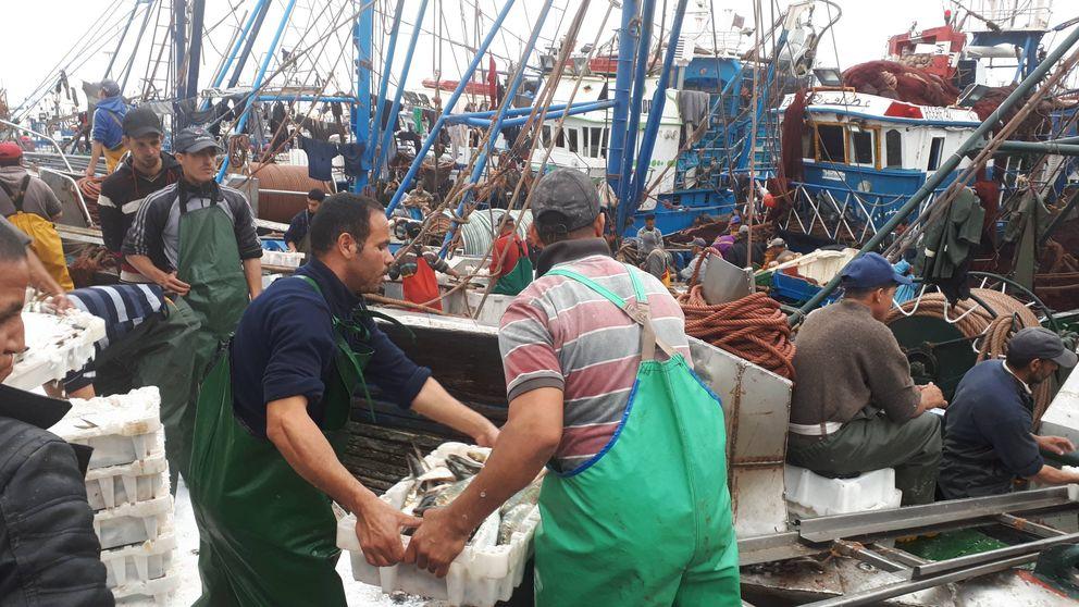 Marruecos negocia con Europa por el pacto pesquero (y el control terrorista)