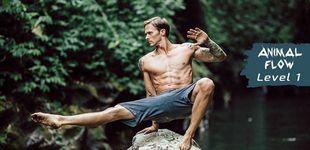 Post de Animal Flow: entrena como una fiera