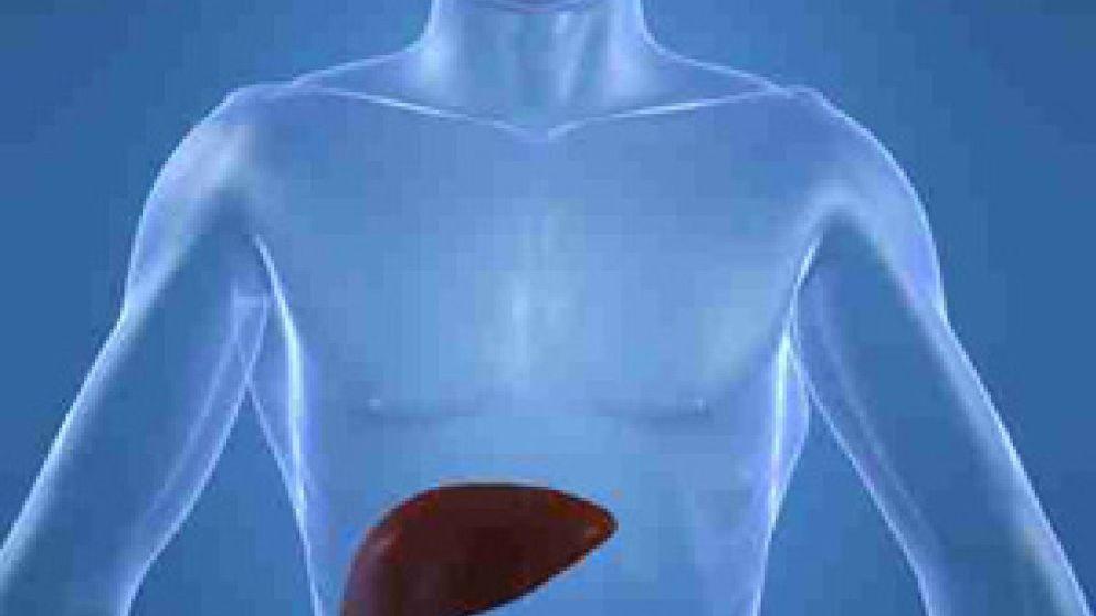 Entre un 2 y un 5% de la población tiene una enfermedad de hígado a la que se hace frente con dieta y vida sana