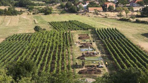 Científicos descubren en Croacia la cuna del queso: aquí nació hace más de 7.000 años