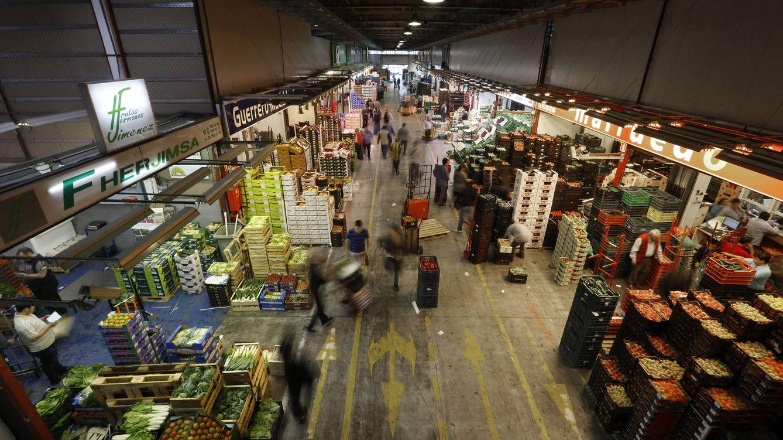 Foto: Instalaciones de Mercados Centrales de Abastecimientos de Madrid, S.A. (Mercamadrid)