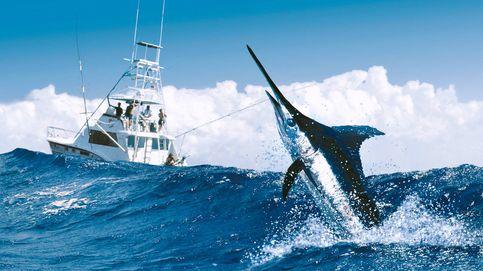 De Brasil a Australia, destinos para practicar la pesca de alta mar