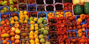 Foto: La salmonela puede provocar intoxicación también a través de fruta y verdura