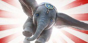 Post de 'Dumbo' vuela en la taquilla y 'Dolor y gloria' de Almodóvar ya es el film español más visto