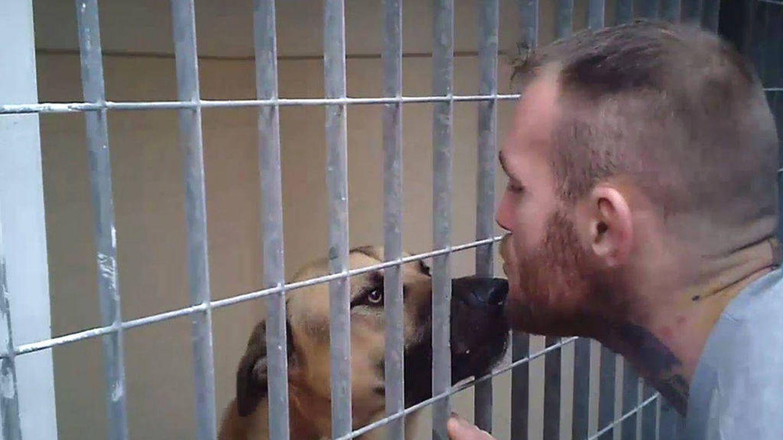Javier Roche, en la tercera entrega de 'A cara de perro'. (Mediaset)