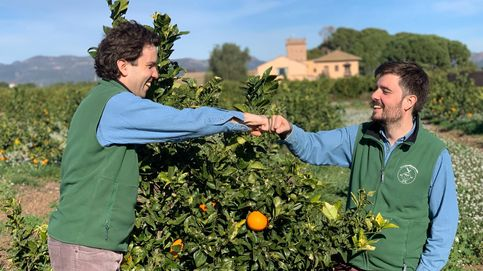Adoptar un árbol o una huerta: el nuevo modelo de consumo sostenible