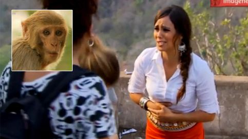 Cristina Pedroche, atacada por los monos en 'Pekín Express': Me he hecho un poquito de pis