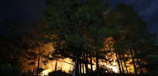 Post de Un incendio quema el Bosque de las cien acres, donde 'vive' Winnie the Pooh