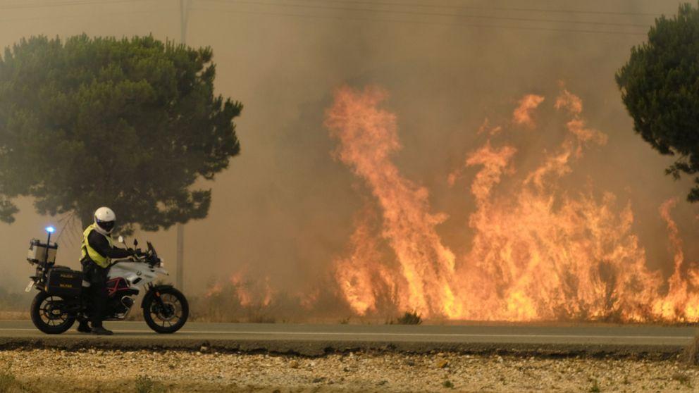 Incendio en Doñana: El Parque está a salvo, es improbable que llegue el fuego