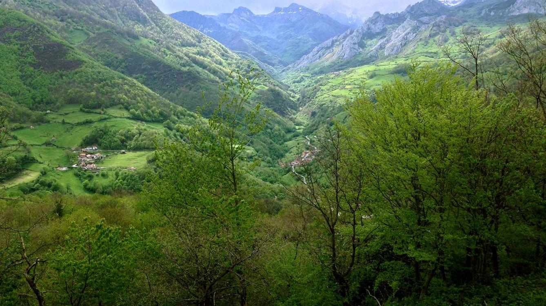 Foto: Paisaje de naturaleza (Jose Luis Gallego)