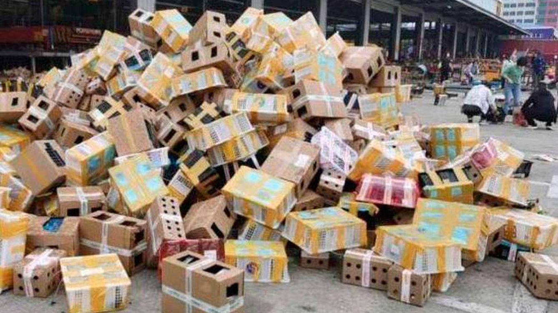 Encuentran 5.000 mascotas muertas y empaquetadas en una empresa china