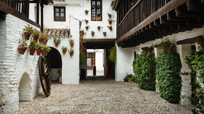Foto: Córdoba acogerá hasta el próximo 29 de octubre la primera edición del Festival Internacional de las Flores (FLORA).