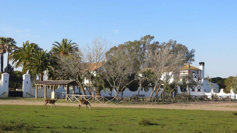 El Palacio de las Marismillas, en Doñana. (CC/Wikimedia Commons)