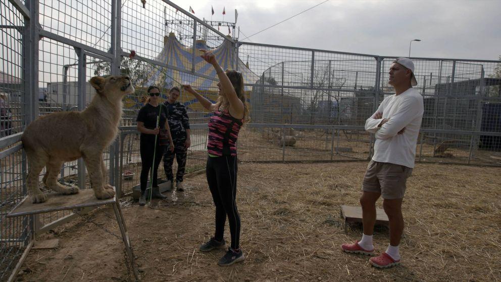 El nuevo planteamiento de Frank Cuesta: circos con animales... ¿sí o no?