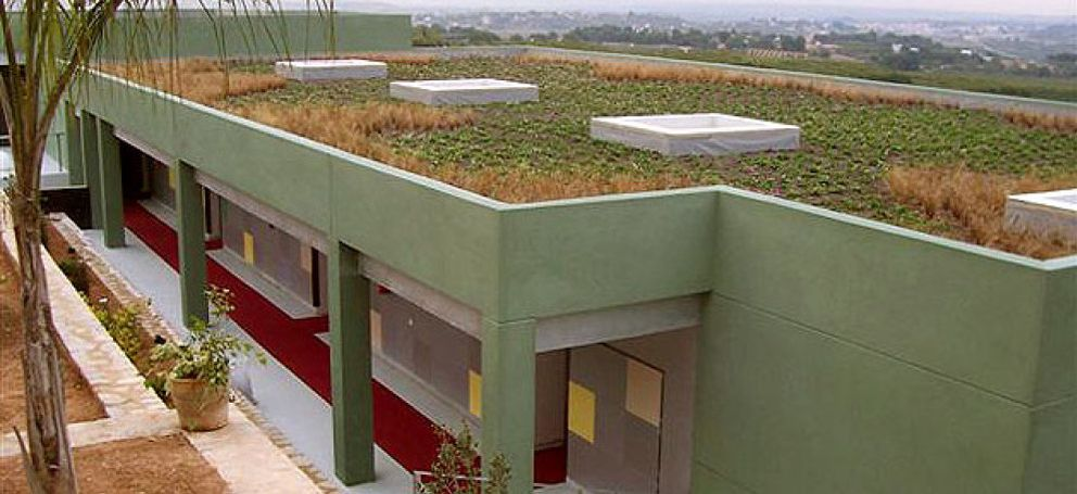 Foto: Llega el 'flower power': cambie su tejado por plantas