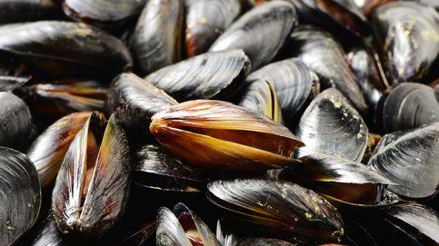 Cómo evitar las sustancias tóxicas naturales de muchos alimentos