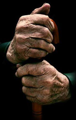 Foto: El 30% de los ancianos padece o está en riesgo sufrir desnutrición