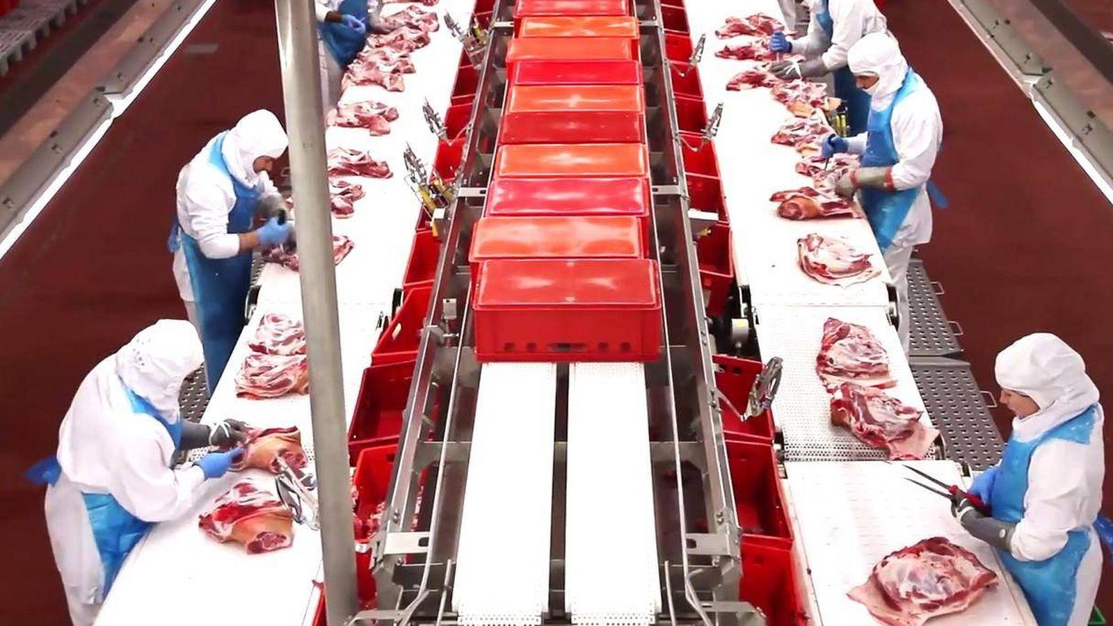 Foto: Empleados del Grupo Vall Companys en la línea de producción. (Vall Companys)