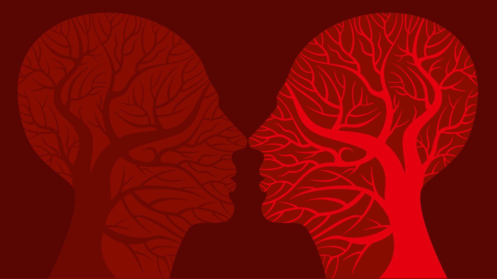 Foto: Cada vez más investigaciones desvelan el funcionamiento de nuestro cerebro. (iStock)