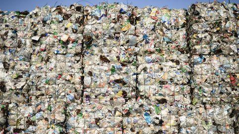 Notable en envases, suspenso en orgánico: lo que puedes reciclar (y no haces)