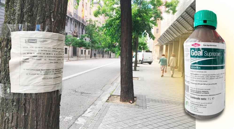 Foto: Carteles advirtiendo del tratamiento en Guzmán el Bueno. (A. V.)