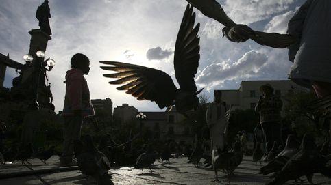 Seis euros por 15 minutos con una niña: los menores explotados de Bolivia