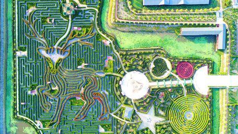 Lugares donde querrás perderte: estos son los laberintos más impresionantes del mundo