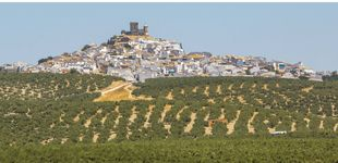 Post de Andalucía no es solo para el verano: ocho planes para descubrir la región este invierno