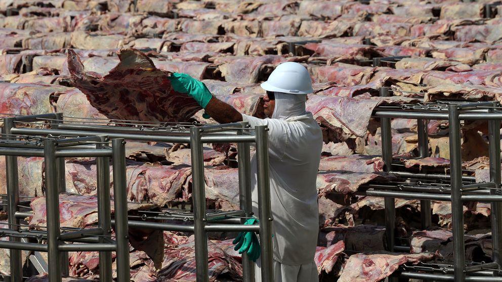 Finlandia propone dejar de comprar carne de Brasil por los incendios del Amazonas