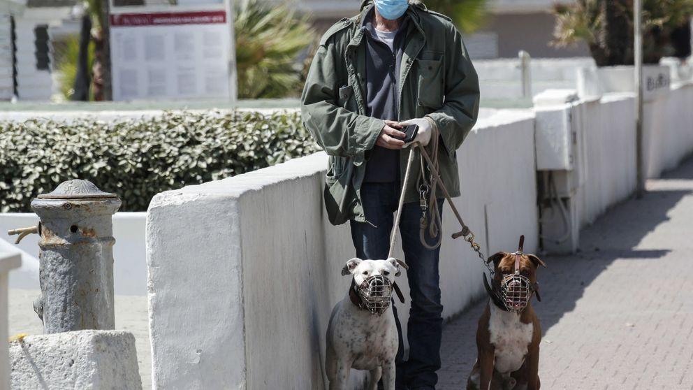 Italia registra 260 muertos con coronavirus, la cifra más baja de las últimas seis semanas