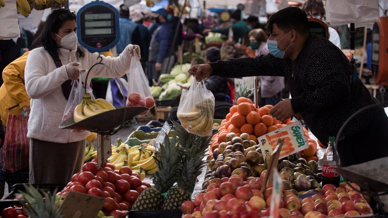 Una de cada cinco bolsas de alimentos va a la basura. (EFE)