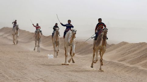 Así son las carreras de camellos en el desierto de Egipto