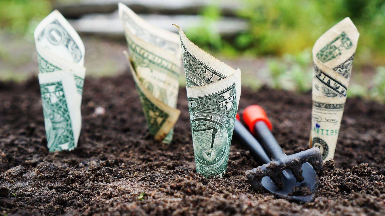 ¿Qué hacer si tu madre te pregunta dónde invertir su dinero?